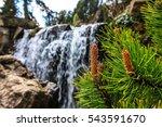 Trees An Waterfall