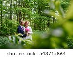look through green branches at... | Shutterstock . vector #543715864
