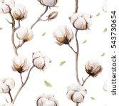 watercolor vintage background...   Shutterstock . vector #543730654