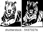 Black and white tiger. - stock photo