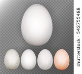 chicken egg set. transparent... | Shutterstock .eps vector #543755488