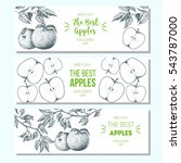 set of banners with hand drawn... | Shutterstock .eps vector #543787000