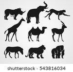 set of african animals. rhino ...