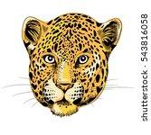 Leopard's Head. Vector...