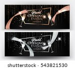 vip gold and silver banners... | Shutterstock .eps vector #543821530