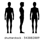 vector illustration of three... | Shutterstock .eps vector #543882889