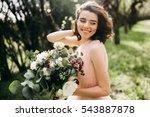 elegant bride smiling with... | Shutterstock . vector #543887878