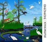 vector wetland pantanal florida ... | Shutterstock .eps vector #543942940