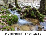 Tiny Mountain Stream Tumbling...