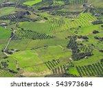 Aerial View Of Cretan Rural...