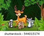 cartoon wild animals in the... | Shutterstock . vector #544015174