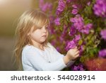 beauty young girl on meadow...   Shutterstock . vector #544028914