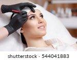 permanent makeup eyebrows.... | Shutterstock . vector #544041883