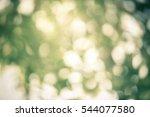 natural bokeh sun rays green... | Shutterstock . vector #544077580