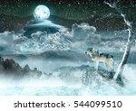 Moon Wolf - stock photo