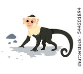 capuchin monkey. cartoon vector ... | Shutterstock .eps vector #544201894