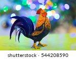 Cockerel Symbol Year. Homemade...