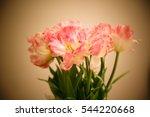 flower | Shutterstock . vector #544220668