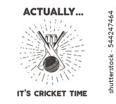 Retro Cricket Club Emblem...