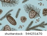 seamless pattern with pine... | Shutterstock .eps vector #544251670