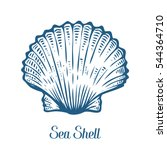 Seashell, sea shell, nature ocean aquatic underwater . Hand drawn marine engraving illustration on white background