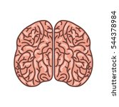 human brain organ isolated icon ... | Shutterstock .eps vector #544378984