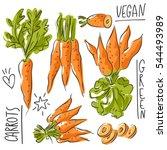 set illustration with carrot... | Shutterstock .eps vector #544493989