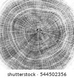 rough aged wood textured tree... | Shutterstock . vector #544502356