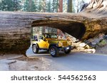 Sequoia NP, California - November 14: Gold jeep going thru a tunnel cut out of a single Sequoia tree trunk. November 14 2016, Sequoia NP, California. - stock photo