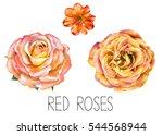 illustration of beautiful red ...   Shutterstock . vector #544568944