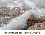 natural sea sponges | Shutterstock . vector #544629046