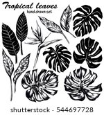foliage set of black and white... | Shutterstock . vector #544697728