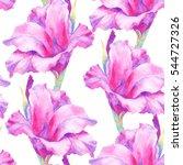 watercolor hand paint pink ... | Shutterstock . vector #544727326