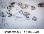 road with snow and shoeprints.... | Shutterstock . vector #544882606