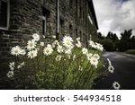 historic building vogelsang | Shutterstock . vector #544934518