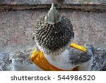 top view of the buddha | Shutterstock . vector #544986520