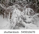 winter landscape. eastern... | Shutterstock . vector #545010670