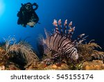 rebreather diver watches an... | Shutterstock . vector #545155174