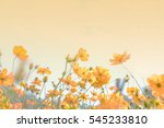 soft blurred the beautiful... | Shutterstock . vector #545233810