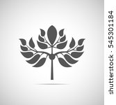 abstract foliate element.... | Shutterstock .eps vector #545301184