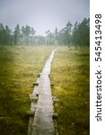 Small photo of A beautiful mire landscape with a hiking path in Finland - dreamy, foggy look