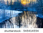 Trees Reflected In Water In A...