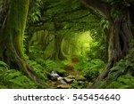 deep tropical jungles of... | Shutterstock . vector #545454640