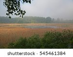 small lake with reed | Shutterstock . vector #545461384