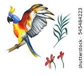 wildflower parrot bird in a... | Shutterstock . vector #545484223