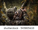 duck hunting | Shutterstock . vector #545805610
