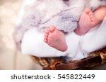 baby's feet close up. | Shutterstock . vector #545822449