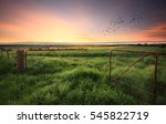 rusty gates open to wheat and... | Shutterstock . vector #545822719