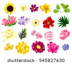 flower set | Shutterstock .eps vector #545827630