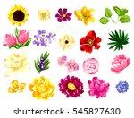 flower set | Shutterstock .eps vector #545827630